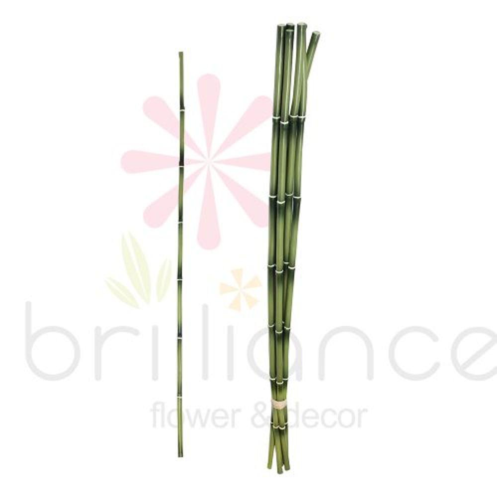 Haste Artificial de  Bambu com 70Cm - Brilliance