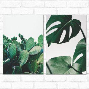 Placa Decorativa Kit Nature