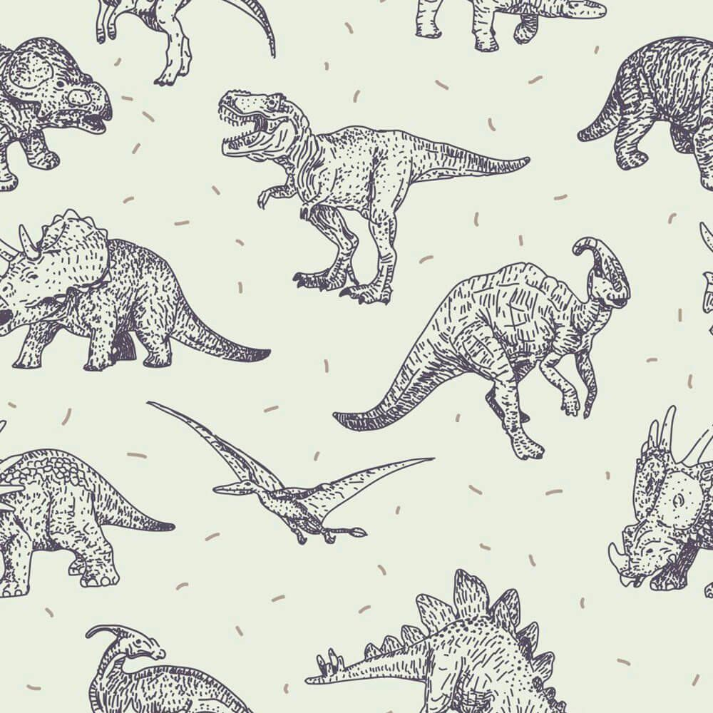 Papel de Parede Adesivo Dinossauro Lines