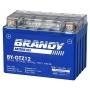 Bateria Brandy Gtz12 Nanogel 0481