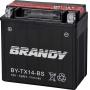 Bateria Brandy Ytx14bs 0118