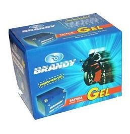 Bateria Brandy Gtz10/ytz10s Hornet/r1 Nanogel