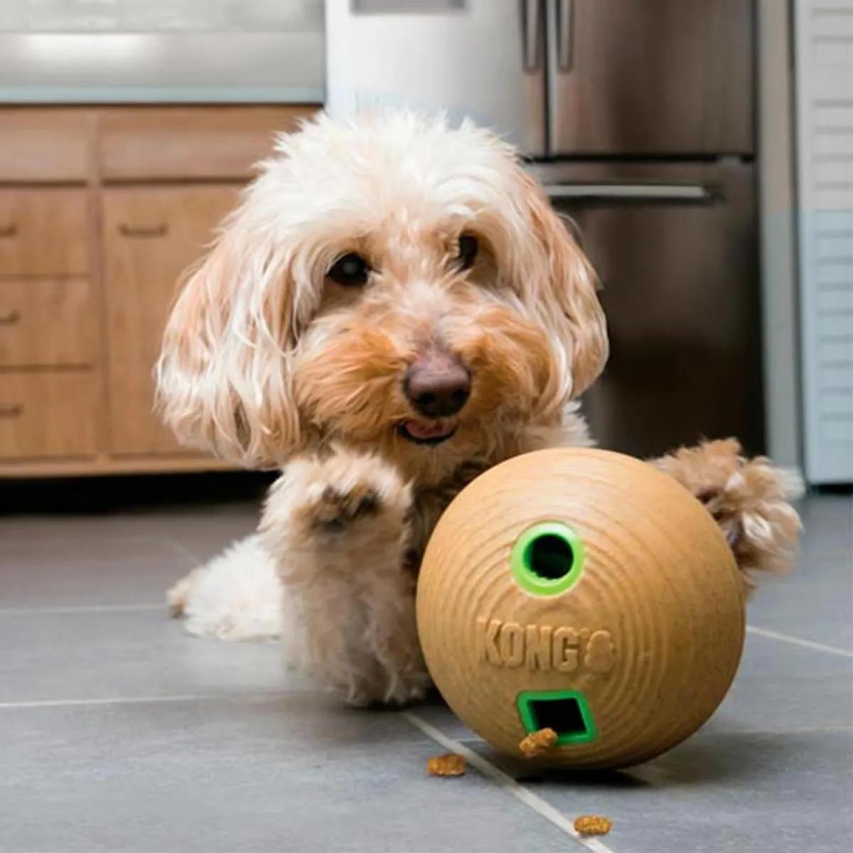 Brinquedo Interativo Para Cachorro Kong Bambu Feeder Dumbbell