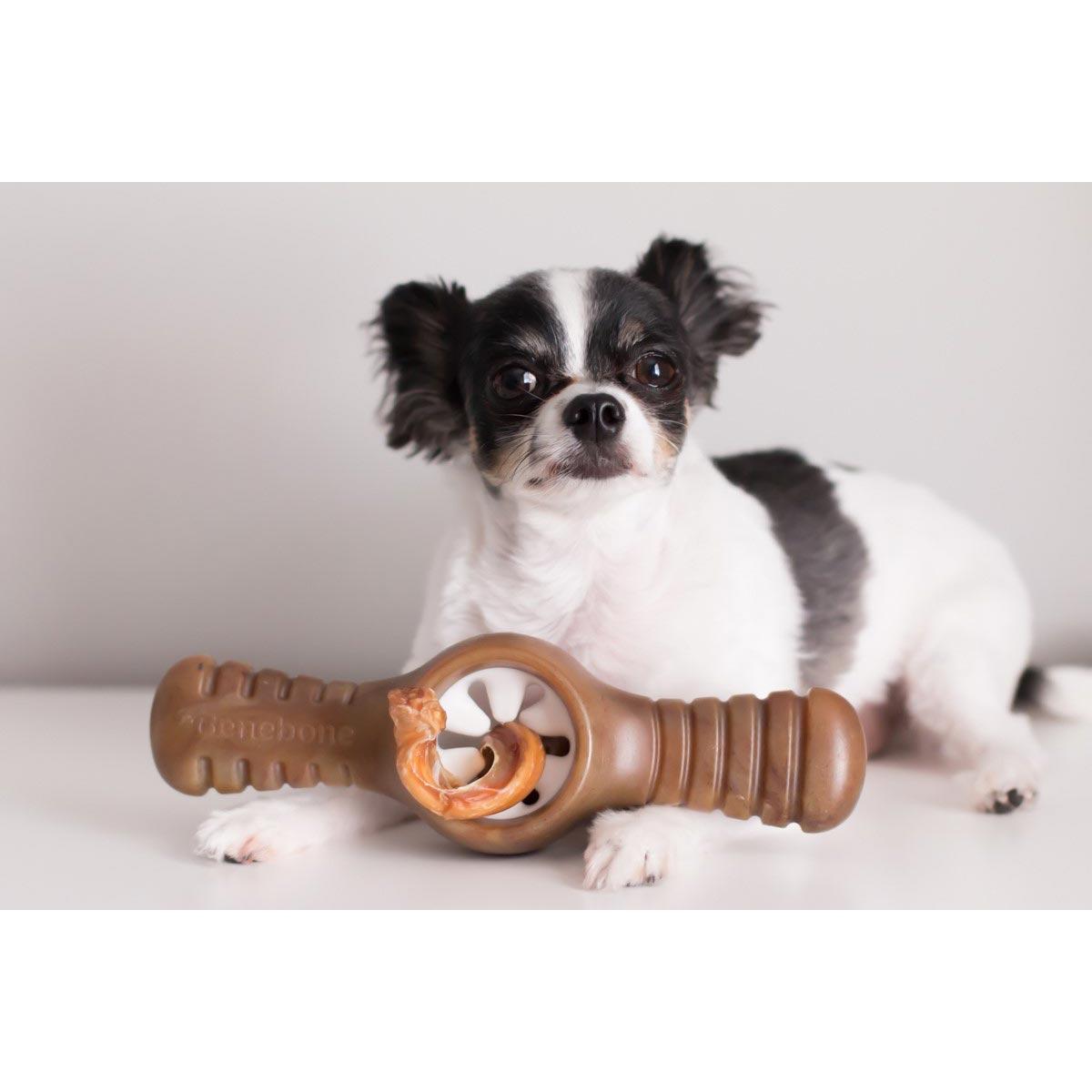 Brinquedo para Cachorro Benebone Pawplexer Bacon