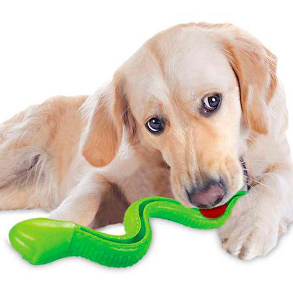 Brinquedo para Cachorro Porta Petisco Cobra TPR Treat Sound Jambo Verde