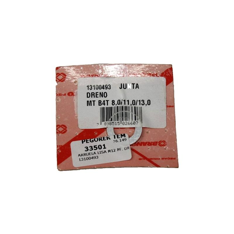 ARRUELA LISA M12 PF. DR 13100493