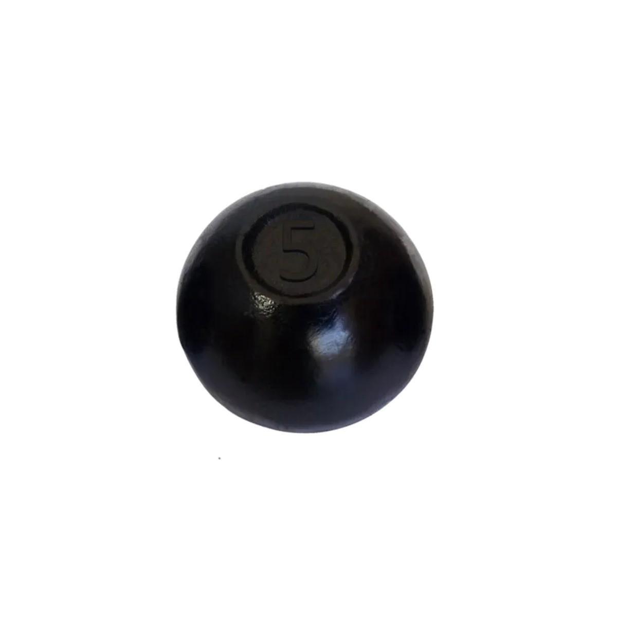 Bola de Arremesso Ferro Fundido Treinamento Funcional 5Kg