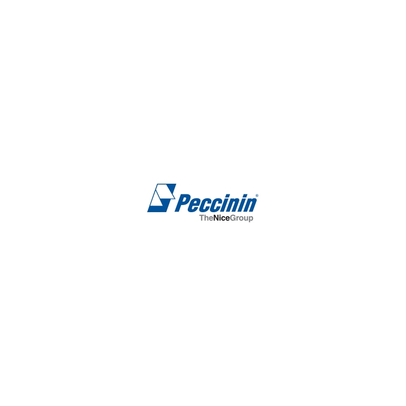 Placa Central NICE CP 4010F Para Motor Peccinin.