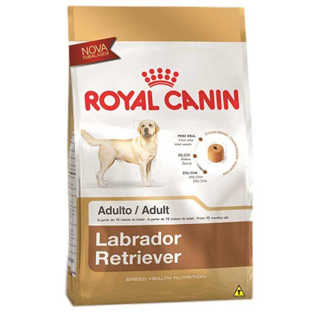 Ração Royal Canin SBN Adult para Cães Adultos da Raça Labrador Retriever