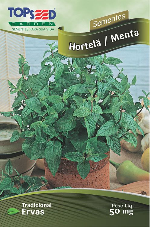 Semente 10 unidades Hortela / Menta C014