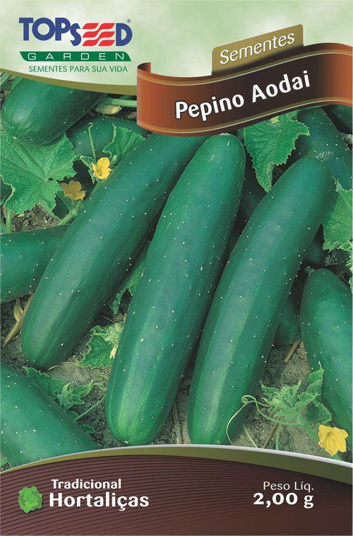 Semente 10 unidades Pepino Aodai H069