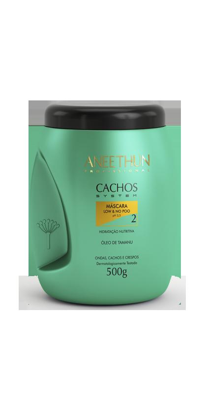 Aneethun Cachos System Máscara Low e No Poo 500g