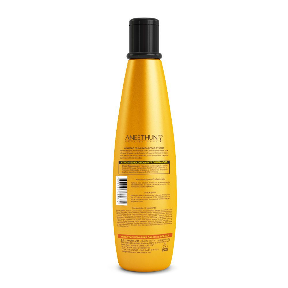 Aneethun Professional Repair System Shampoo Pós Química 1 300ml