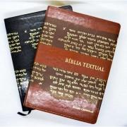 Bíblia de Estudo Textual | Letra Gigante | Luxo