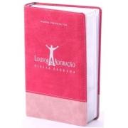Bíblia Louvor E Adoração Capa Bicolor