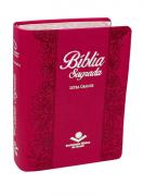 Bíblia Sagrada NAA Lateral Pintada - Pink