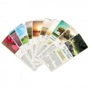 Folhetos Seleções Bíblicas - Série Seleção 3