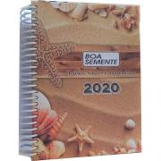 Livro de Meditações Boa Semente 2020 - Areia e Conchas