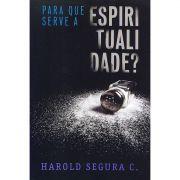 Livro Para Que Serve a Espiritualidade?