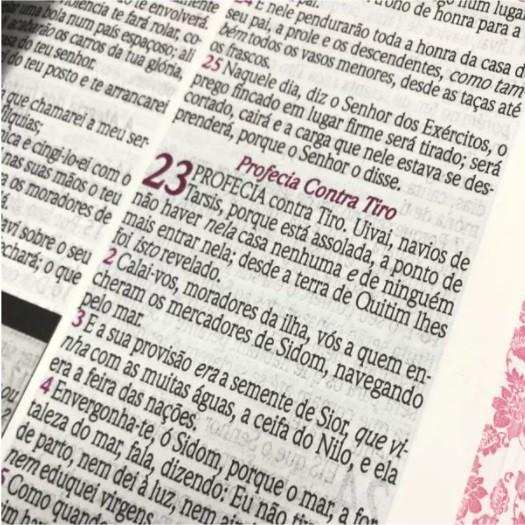 Bíblia de Estudo da Mulher Sábia Pequena com Harpa Avivada e Corinhos - RC - Tulipa