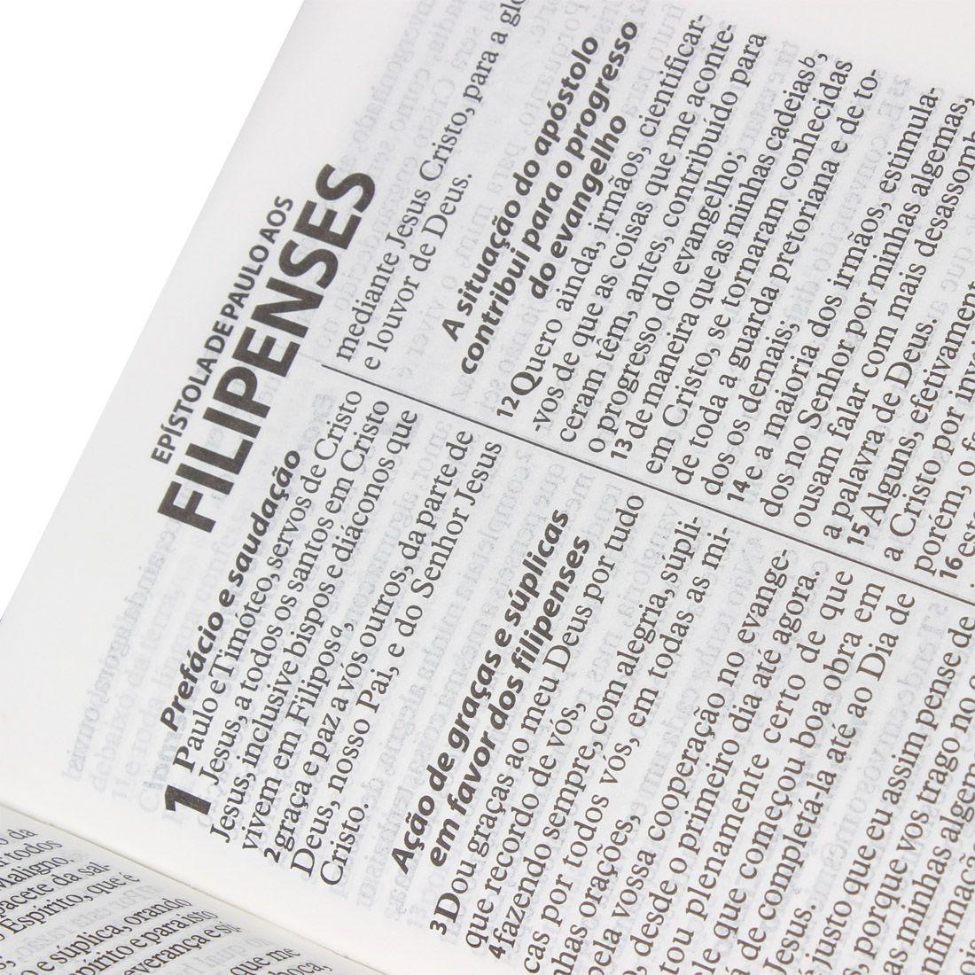 Bíblia Sagrada com Letra Grande - Beiras Floridas