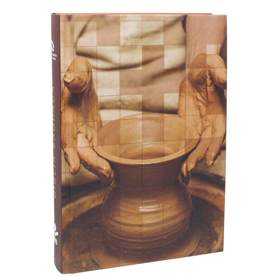 Bíblia Sagrada NAA - Oleiro