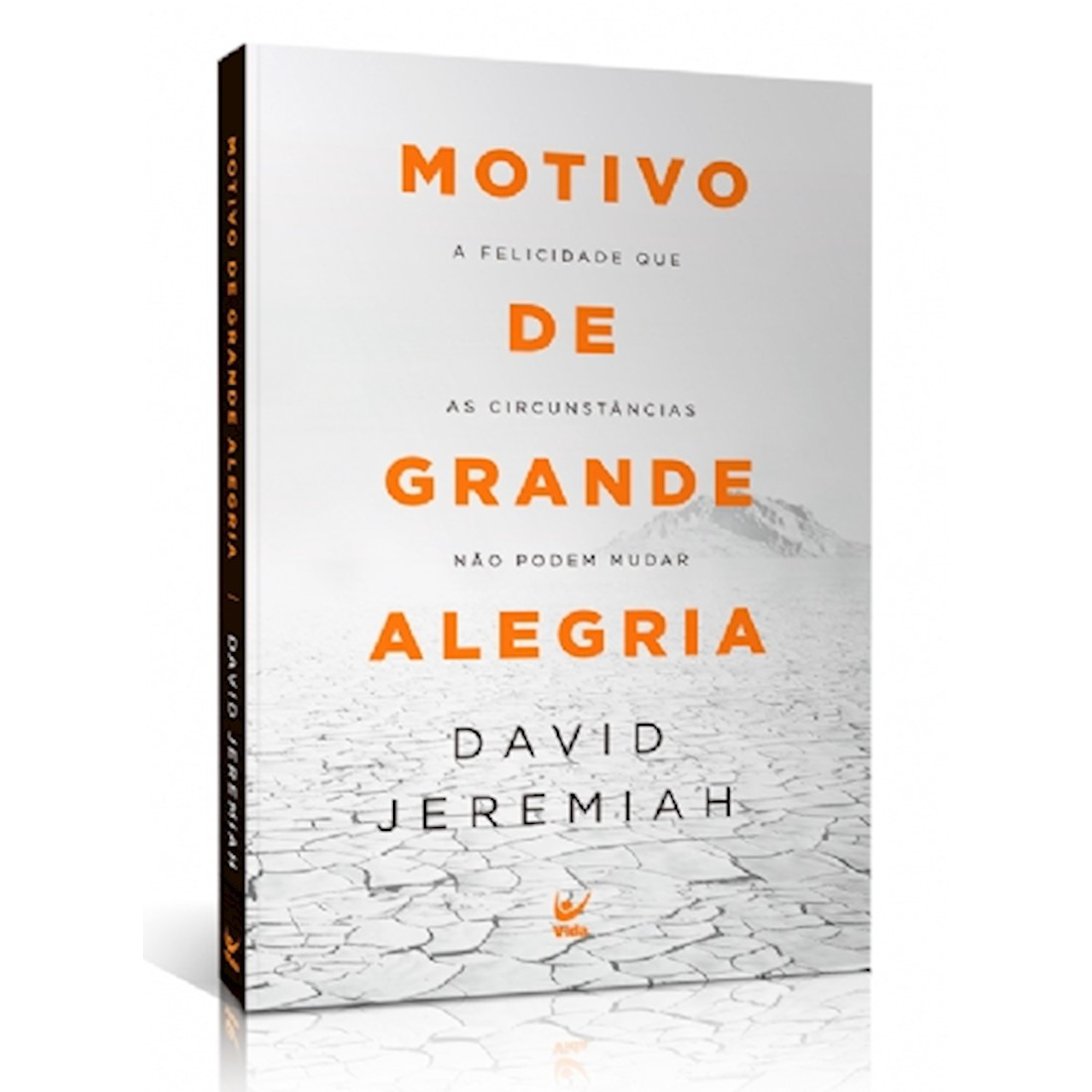 Livro Motivo de Grande Alegria