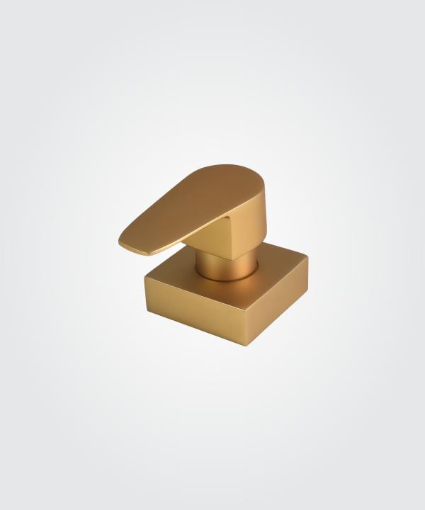 Acabamento Registro Led DF76 Dourado Fosco Pq Base Docol 11647623