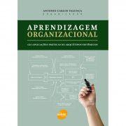 Aprendizagem organizacional: 123 aplicações práticas de arquétipos sistêmicos