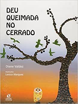 DEU QUEIMADA NO CERRADO