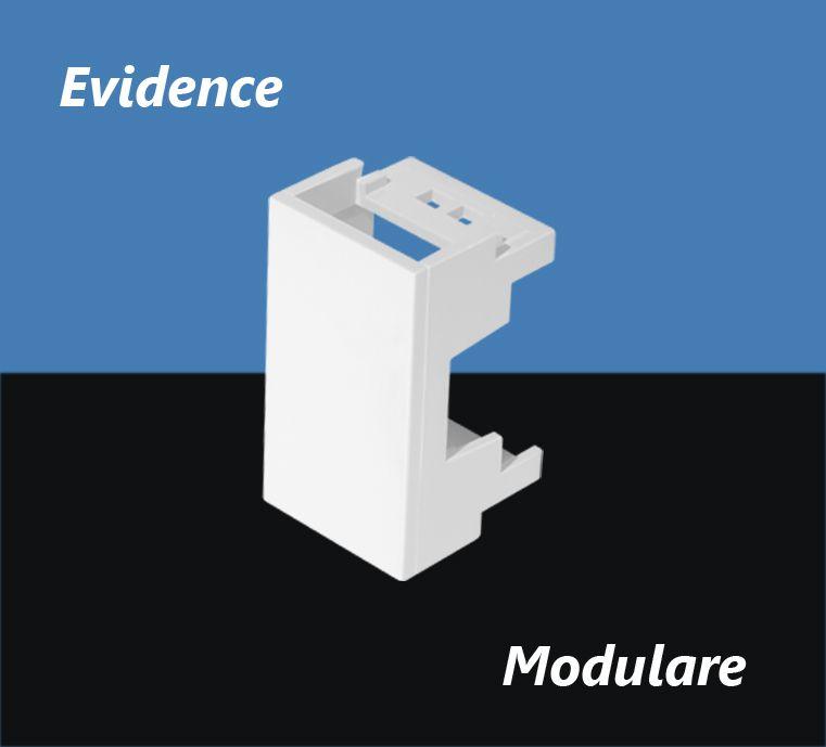 MODULO CEGO FAME EVIDENCE 2658
