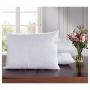 Travesseiro Eco 45x65Cm Branco - Hedrons - 4442