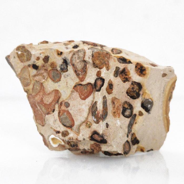 Leopardita - 6,3 cm