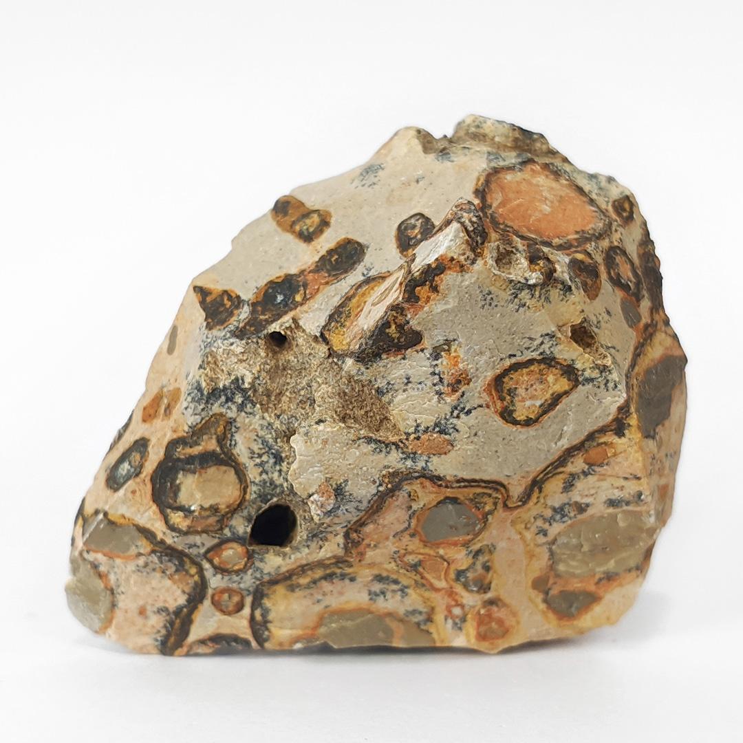 Leopardita - 6,4 cm