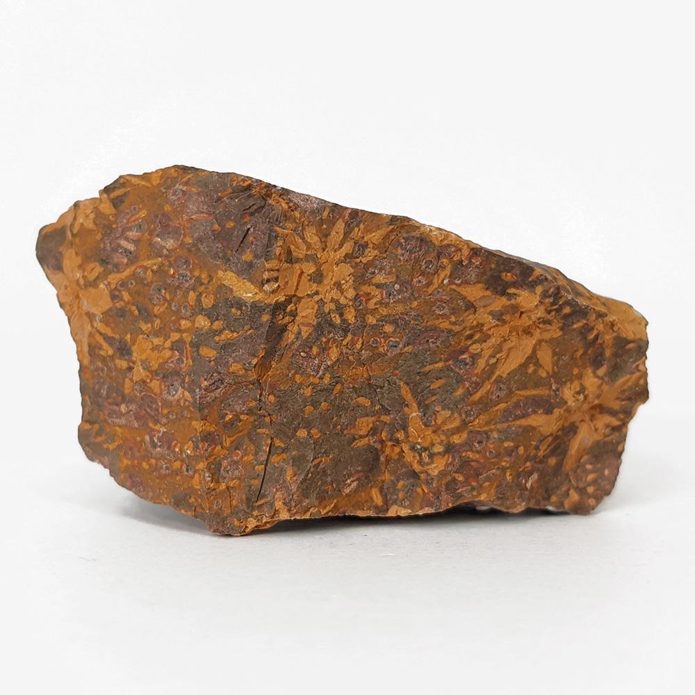 Riólito Starburst - 5,4 cm