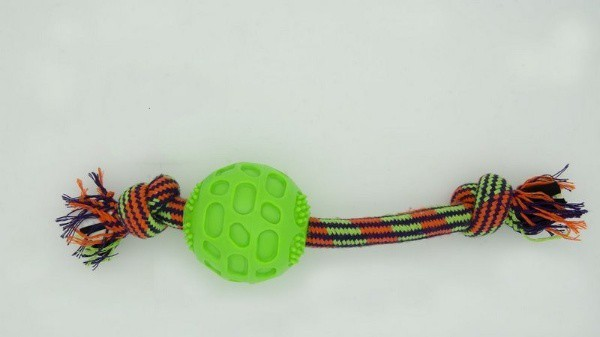Brinquedo Mordedor de Bola com Corda Amo Pet