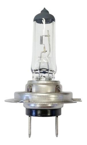 Lâmpada Do Farol H7 12v 55w Melhor Preço