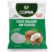 Coco Ralado em Flocos Copra 100g