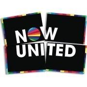 Painel 4 Lâminas Now United Festcolor