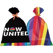 Sacola Plástica Now United 14,5x25cm C 8 unid Festcolor