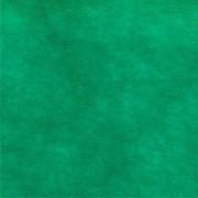Toalha TNT Verde Escuro 80cm x 80cm C 05 unid