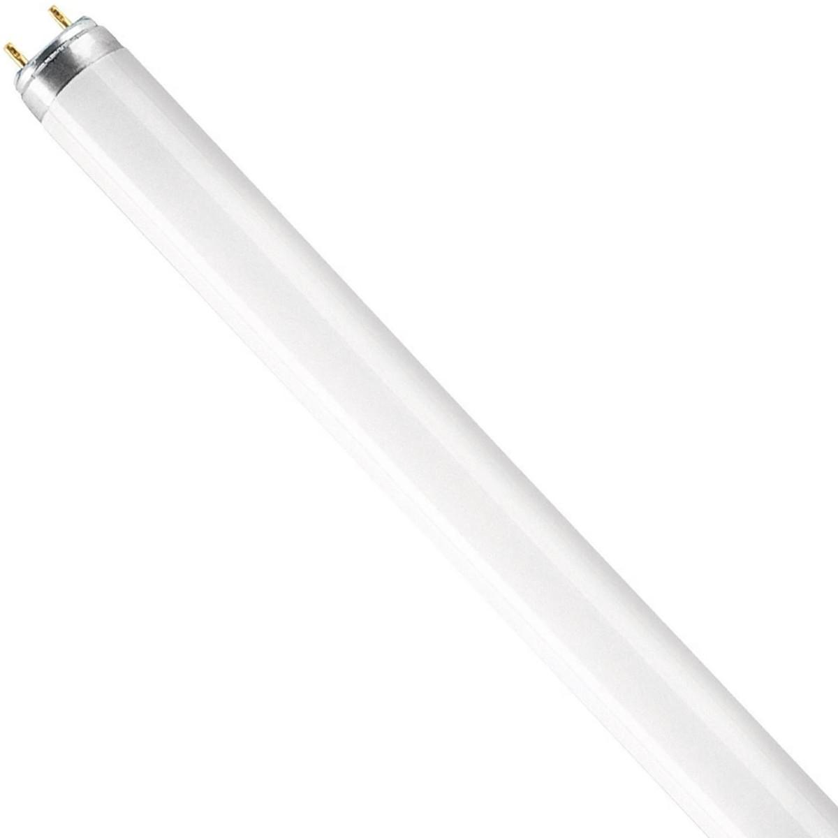 Lâmpada Fluor Basic T8 FO16W 640 Osram