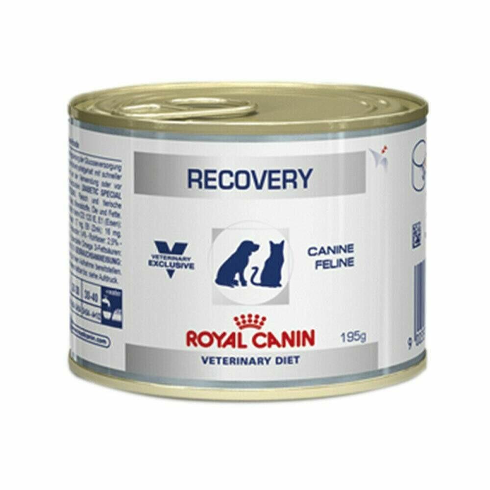 Ração Úmida Lata Royal Canin Recovery Cães E Gatos 195g