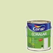 CORALAR ACRIL. CORAL 3,6L VD.VALE 5202322