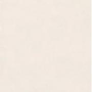 PORCELANATO MAGESTIC LUX PO EMBRAMACO 61,8X61,8 CX2,67 P62064