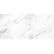 REV.GRAN CALACATA GRAY SATINY EMBRAMACO 46X100 CX2,80 RT46502