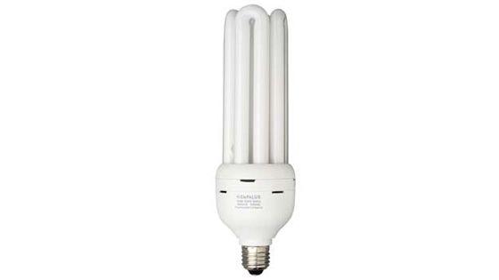LAMP.FLUOR.COMP.127V EMPALUX 25W BR.FL12516