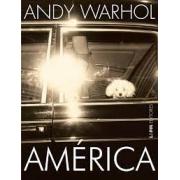 América: Andy Warhol