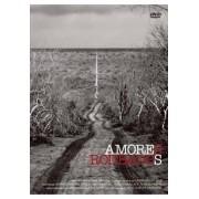 AMORES ROUBADOS DVD