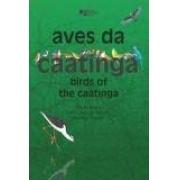 Aves da caatinga. Birds of the caatinga. CD incluso